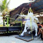 Tempat Bikin Patung Kuda Resin/081578135034/Patung Maskot Kuda