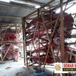 Patung Maskot Kepiting/081578135034