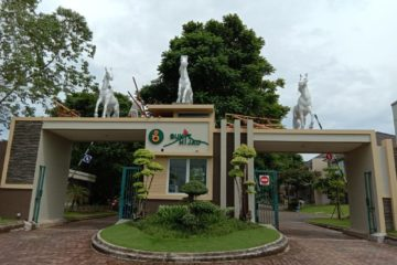 Patung Kuda Citraland Belipatungkuda Patungmarion
