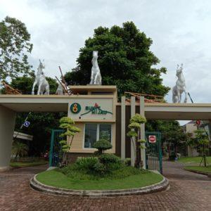 Patung Kuda Harapan Indah Patung Kuda Bali Jualpatung