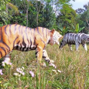 Buat Harimau Jasa Bikin Patung Harimau Patung Harimau Besar