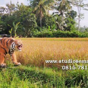 Patung Harimau Loncat Patung Macan Madiun Patung Macan Meme