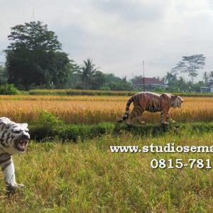 Patung Macan Garut Patung Harimau Patung Harimau Garut